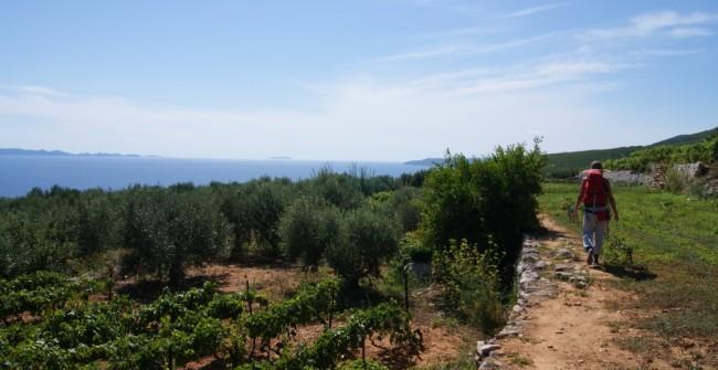 Séjour multi-activités sur les îles de Dalmatie